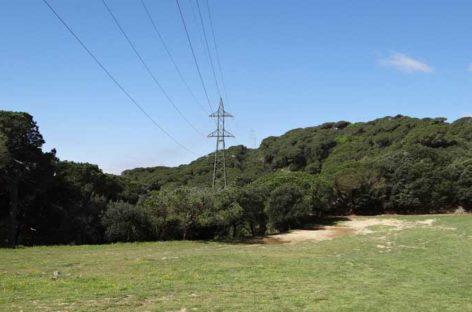 Endesa refuerza la línea de Alta Tensión que pasa por el interior del Parc de la Serralada Litoral