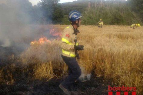 Video del incendio de este domingo entre Vallromanes y Montornès