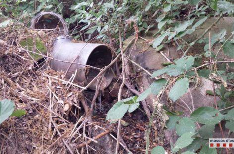 Denunciado un restaurante de Montcada por verter residuos fecales al Besòs