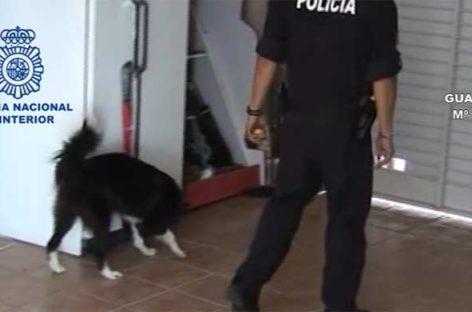Cinco detenidos en Granollers y Canovelles en una operación contra el narcotráfico internacional