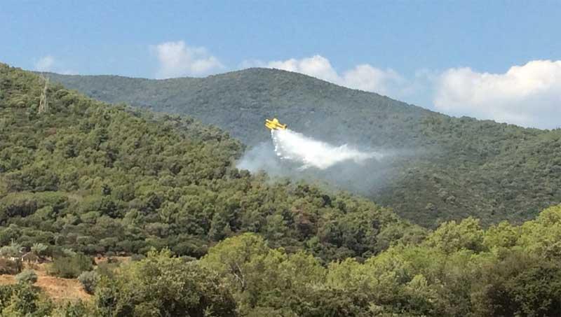 Un hidroavión actuando sobre el incendio. Foto: Policia Local de Les Franqueses