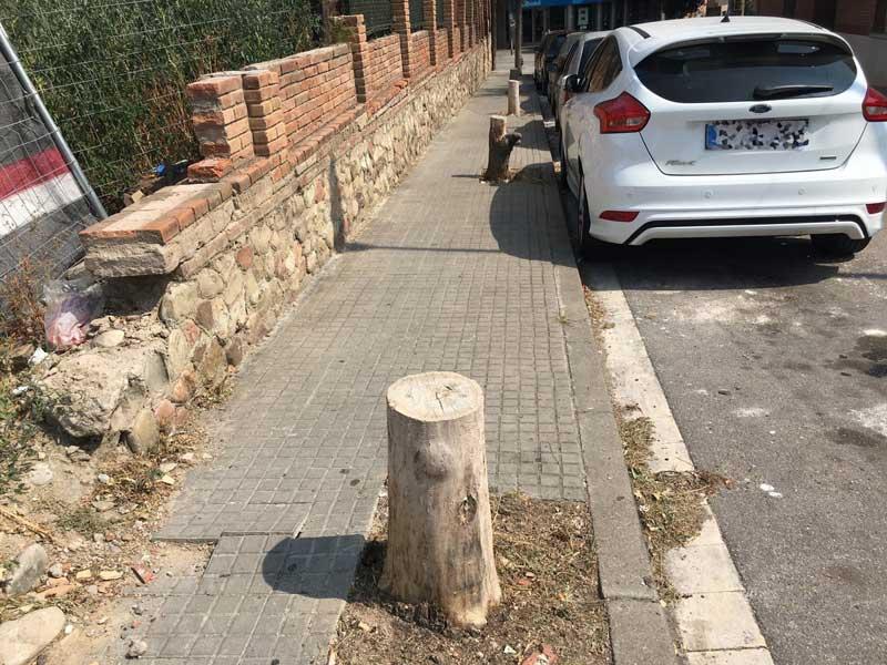 ERC pide que se retiren los troncos cortados de la calle