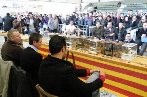 """Suspendido el concurso """"ocellaire"""" de Canovelles por temor a la gripe aviar"""