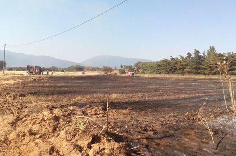 Un petardo provoca un incendio en un campo de Cardedeu