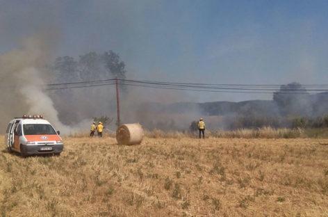 Nuevo incendio en una zona agrícola y forestal en Cardedeu