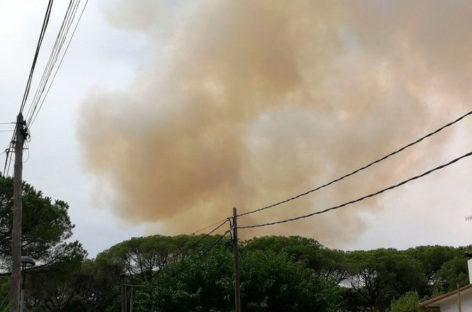 Incendio forestal junto a la urbanización Vallserena de Sant Pere de Vilamajor