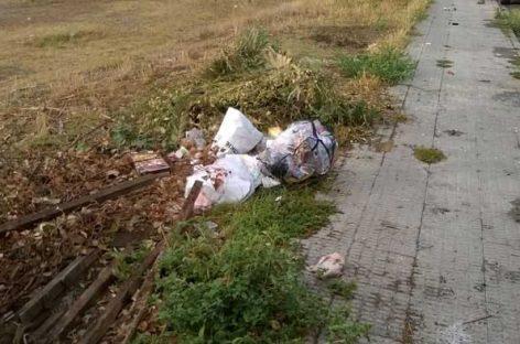 El Ayuntamiento de Lliçà d'Amunt contratará a once desempleados del municipio para limpiar y reparar las calles