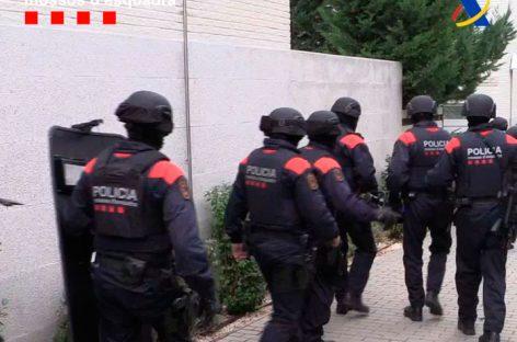 Mossos y Agencia Tributaria desarticulan una banda que tenía una plantación de marihuana en Vallromanes