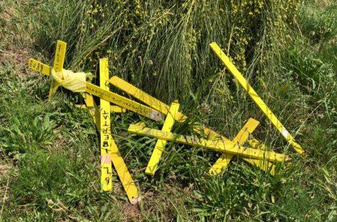 Roban y destrozan la plantada de cruces amarillas realizada por el CDR de Caldes